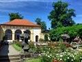 ruzova-zahrada_f